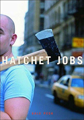9781565848740: Hatchet Jobs: Writings on Contemporary Fiction