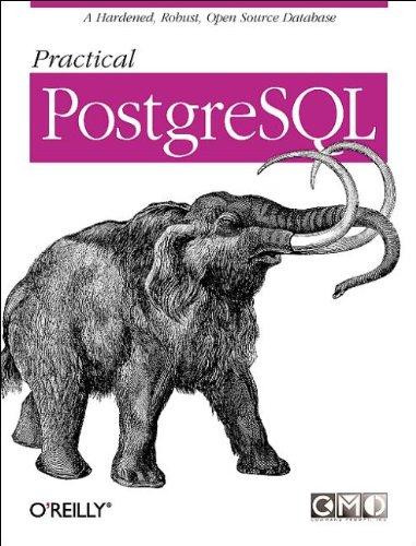 9781565928466: Practical PostgreSQL