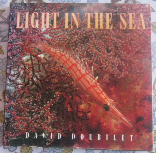 9781566199421: Light in the sea