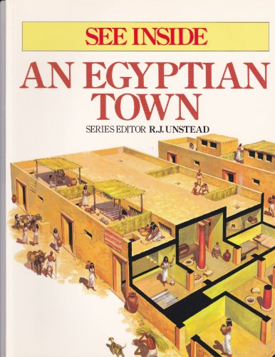 9781566199889: An Egyptian town (See inside)