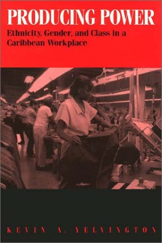 9781566392853: Producing Power: Ethnicity, Gender, and Class in a Caribbean Workplace
