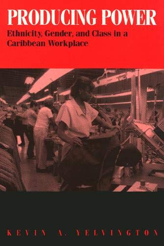 9781566392860: Producing Power: Ethnicity, Gender, and Class in a Caribbean Workplace