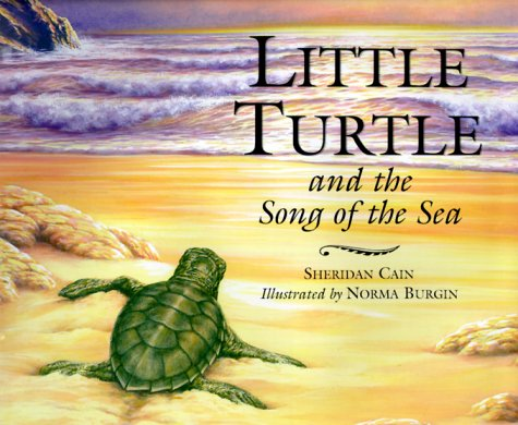 9781566563550: Little Turtle and the Song of the Sea