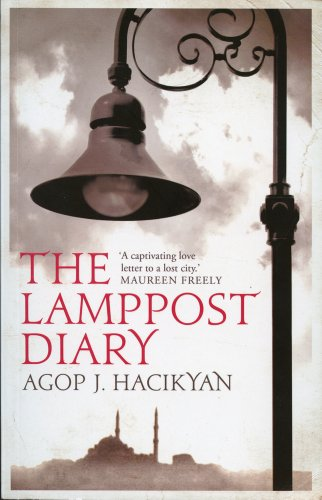 9781566568555: The Lamppost Diary