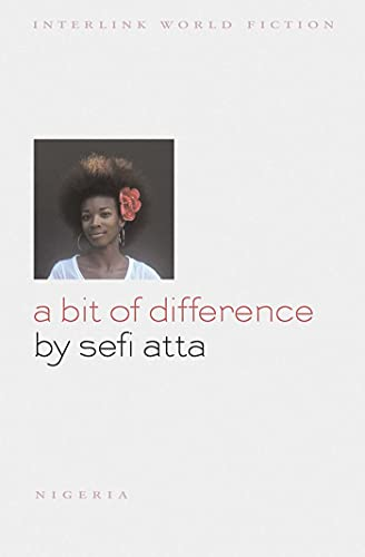 9781566569668: A Bit of Difference (Interlink World Fiction)