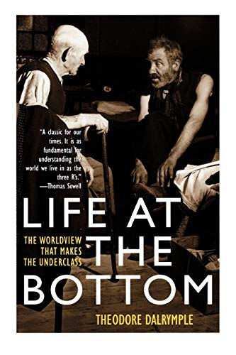 9781566635059: Life at the Bottom: The Worldview That Makes the Underclass