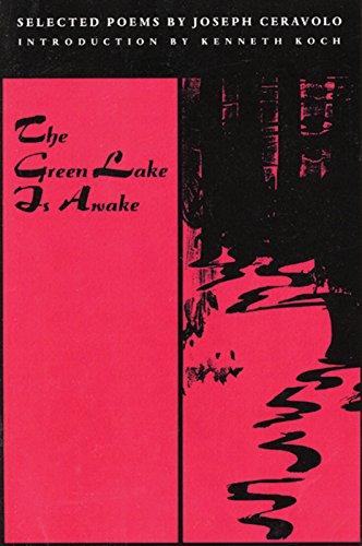 9781566890212: The Green Lake Is Awake