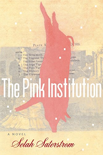 9781566891554: The Pink Institution