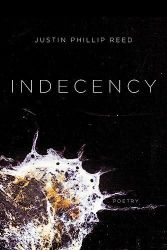 9781566895149: Indecency