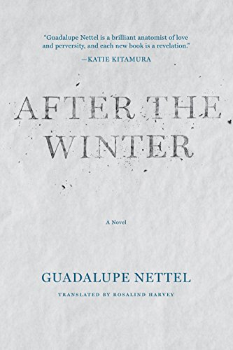 9781566895255: After the Winter