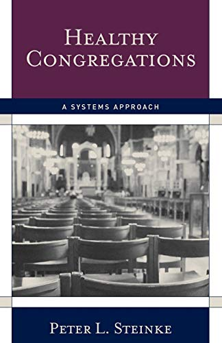 9781566993302: Healthy Congregations: A Systems Approach