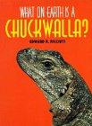 What on Earth Is a Chuckwalla?: Ricciuti, Edward R.