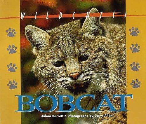 Wildcats of North America - Bobcat: Jalma Barrett