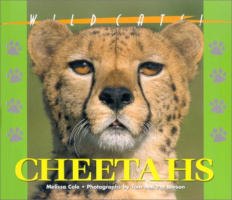 9781567114492: Wildcats of the World - Cheetahs