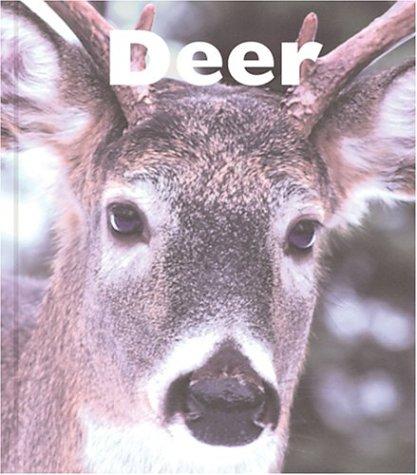 9781567665864: Deer (Naturebooks: Mammals)