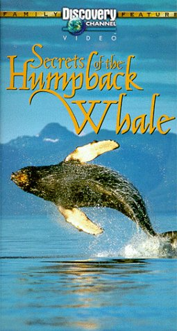 9781568124827: Secrets of the Humpback Whale [VHS]