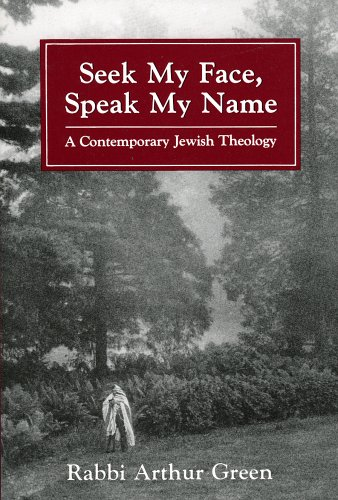 9781568212135: Seek My Face Speak My Name: A Contemporary Jewish Theology