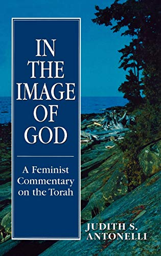 9781568214382: In the Image of God: A Feminist Commentary on the Torah