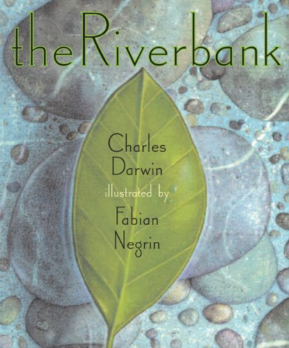 9781568462073: The Riverbank