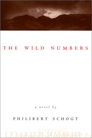 9781568581668: The Wild Numbers: A Novel