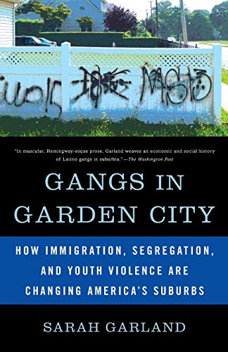 9781568586151: Gangs in Garden City: How Immigration, Segregation, and Youth Violence are Changing America's Suburbs