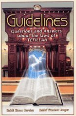 9781568713441: Guidelines: Questions & Answers about the Laws of Tefillah