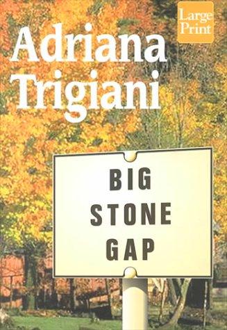 9781568959191: Big Stone Gap (Wheeler Large Print Book Series)