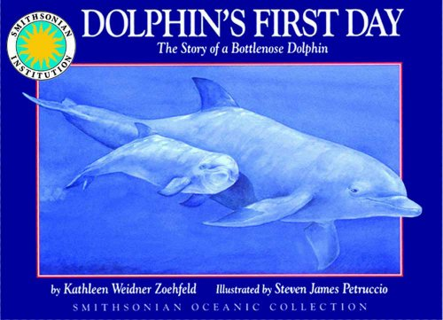 9781568990255: Dolphin's First Day: The Story of a Bottlenose Dolphin - a Smithsonian Oceanic Collection Book (Mini book)