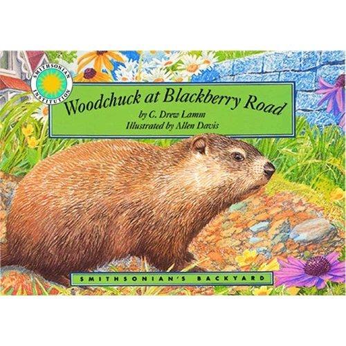 9781568990897: Woodchuck at Blackberry Road (Smithsonian's Backyard)