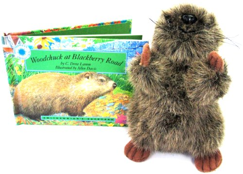 9781568990903: Woodchuck at Blackberry Road - a Smithsonian's Backyard Book (Mini book with stuffed toy animal)