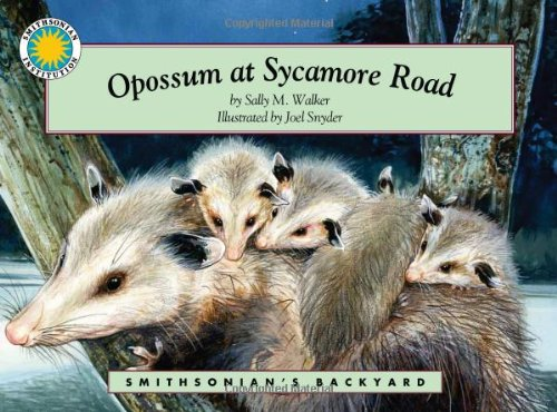 9781568994833: Opossum at Sycamore Road - a Smithsonian's Backyard Book (Mini book)