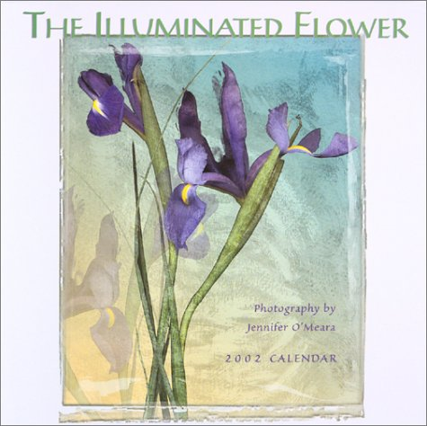 9781569062920: The Illuminated Flower Calendar 2002