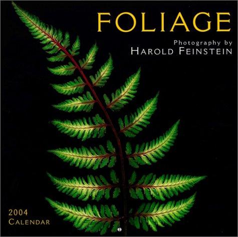 9781569066645: Foliage 2004 Calendar