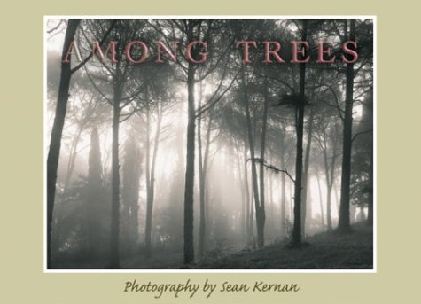 9781569067758: Among Trees Boxed Notecards
