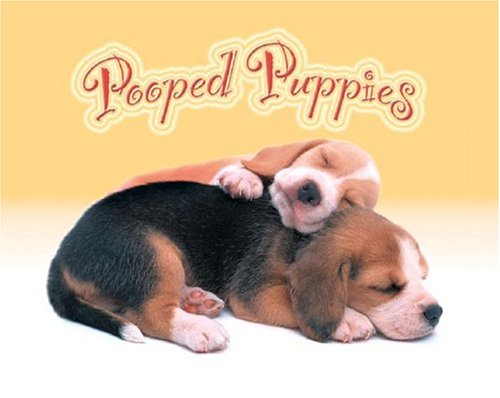 9781569067871: Pooped Puppies Boxed Notecards