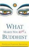 What Makes You Not A Buddhist: Dzongsar Jamyang Khyentse