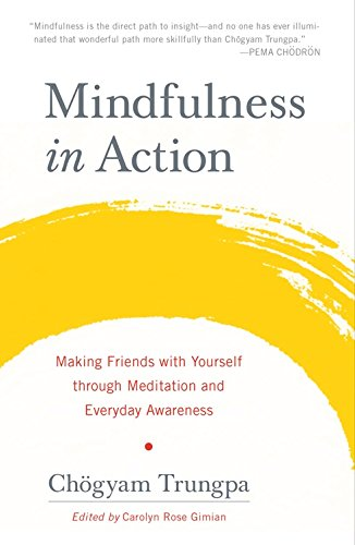 9781569570326: Mindfulness in Action : Making Friends with Yourself through Meditation PB $ 14.95 (SAE)