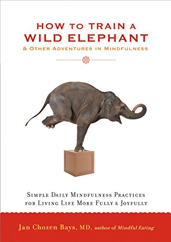 9781569570432: How to Train a Wild Elephant [Paperback]