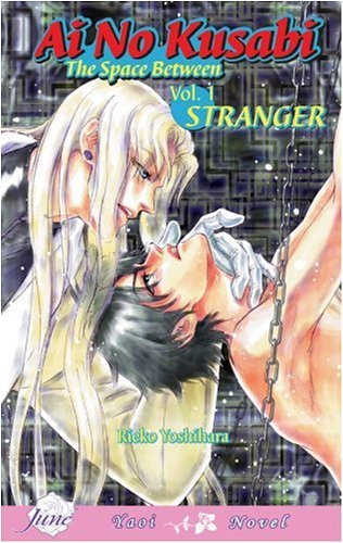 9781569707821: Ai No Kusabi The Space Between Volume 1: Stranger (Yaoi Novel)