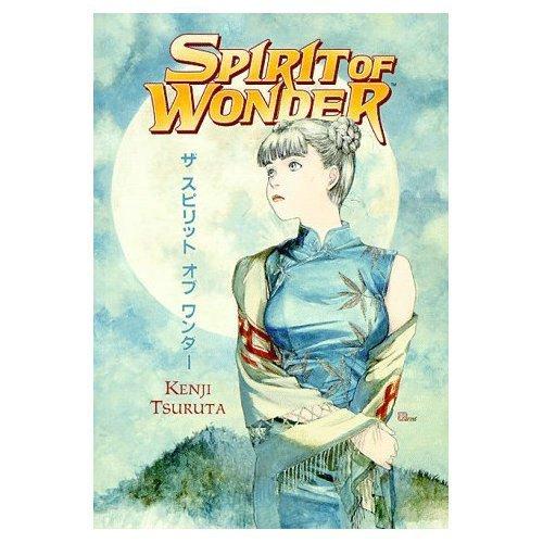 9781569712887: Spirit of Wonder