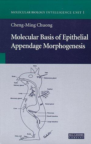 Molecular Basis of Epithelial Appendage Morphogenesis (Molecular Biology Intelligence Unit)