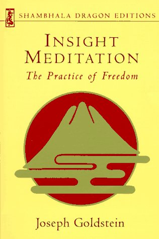 9781570620256: Insight Meditation (Shambhala Dragon Editions)
