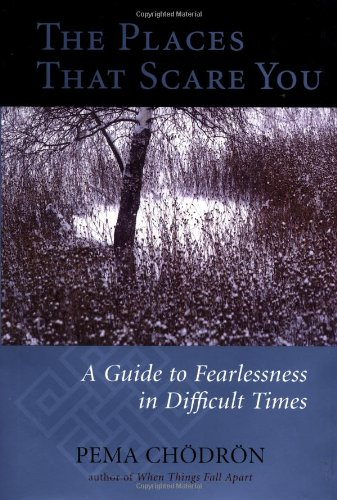 9781570624094: The Places That Scare You: A Guide to Fearlessness in Difficult Times