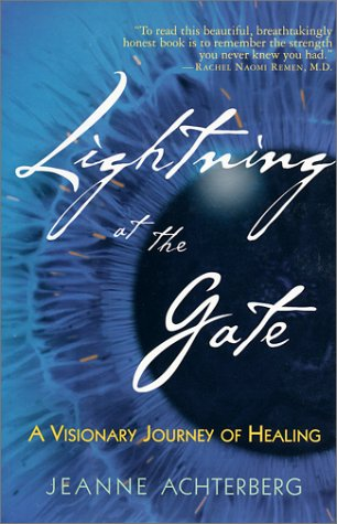 9781570628580: Lightning at the Gate: A Visionary Journey of Healing
