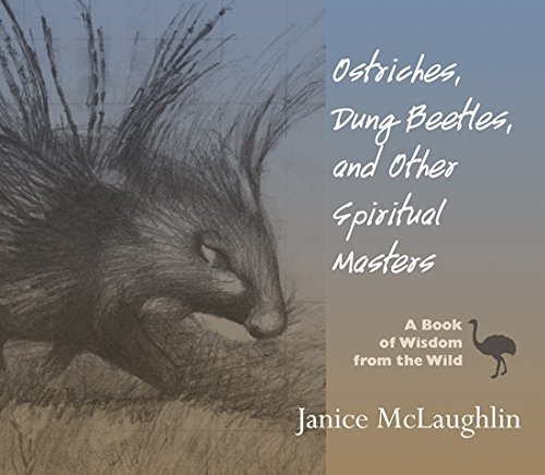 9781570758423: Ostriches, Dung Beetles and Other Spiritual Masters: A Book of Wisdom from the Wild