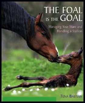9781570763045: The Foal Is the Goal Managing Your Mare and Handling a Stallion