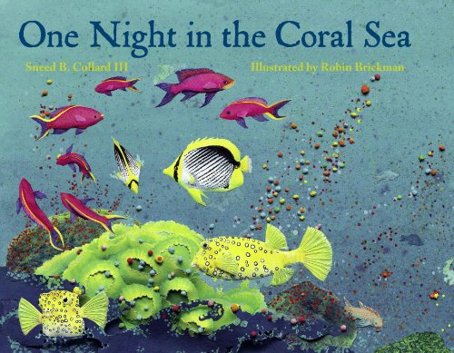 9781570913891: One Night in the Coral Sea