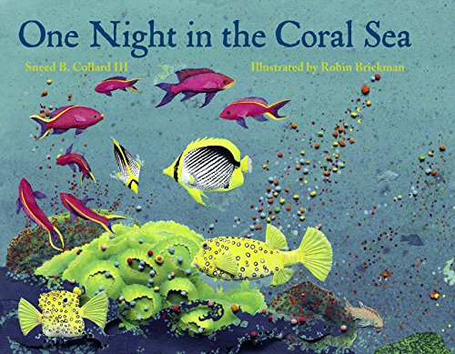 9781570913907: One Night in the Coral Sea