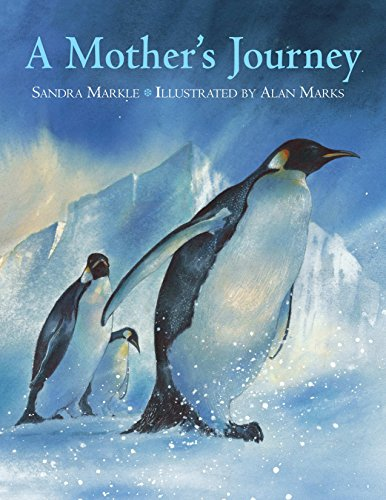 9781570916229: A Mother's Journey