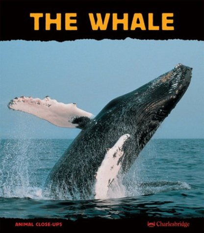 9781570916250: The Whale: Giant of the Ocean (Animal Close-Ups)